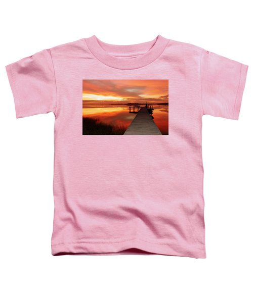 Dawn Of New Year Toddler T-Shirt