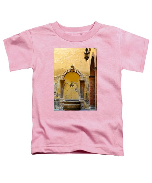 Fountain In Sienna Toddler T-Shirt