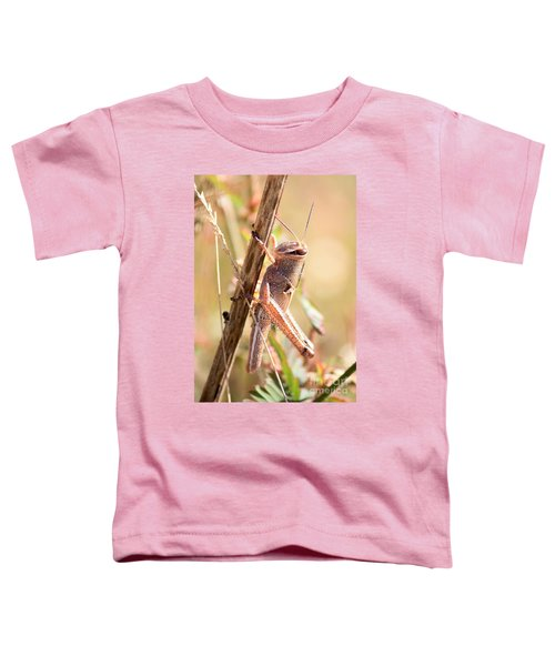 Grasshopper In The Marsh Toddler T-Shirt by Carol Groenen