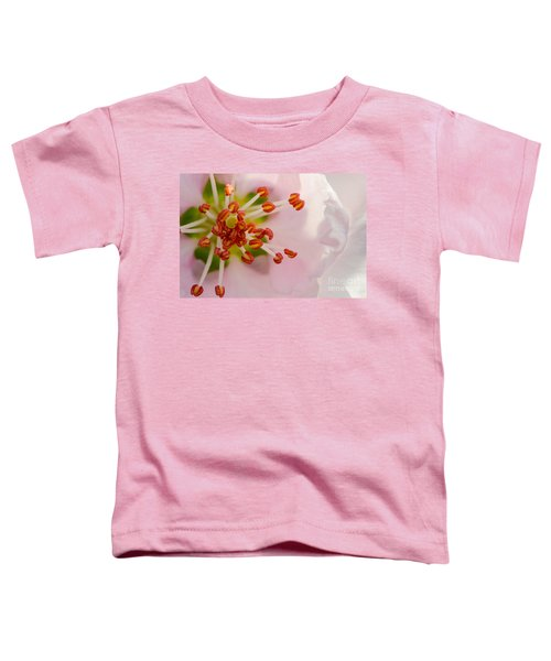In A Pink Cloud Toddler T-Shirt