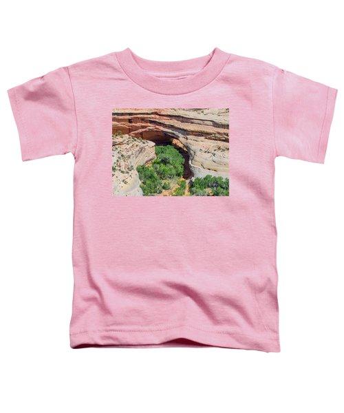 Kachina Bridge Toddler T-Shirt