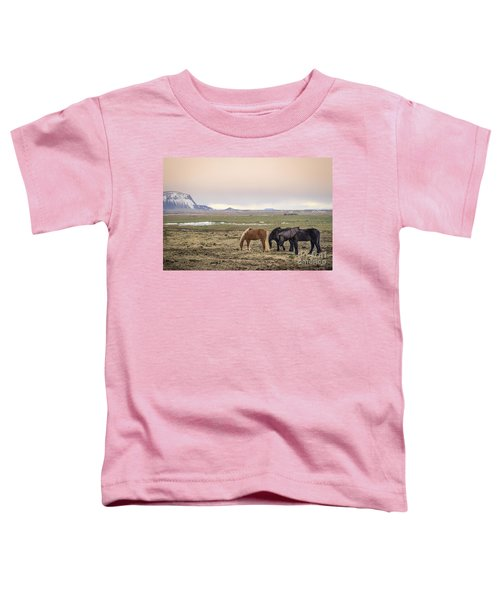 Kings Of The Nordic Twilight Toddler T-Shirt