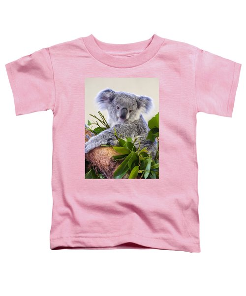 Koala On Top Of A Tree Toddler T-Shirt