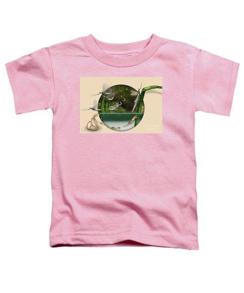 Life Cycle Of Mayfly Ephemera Danica - Mouche De Mai - Zyklus Eintagsfliege - Stock Illustration - Stock Image Toddler T-Shirt