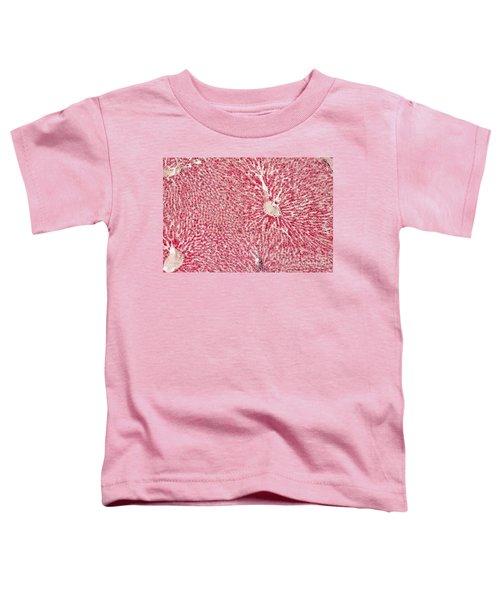 Liver Lm Toddler T-Shirt