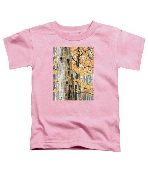 Natures Harmony Toddler T-Shirt