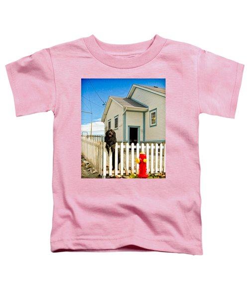 Newfoundland Dog In Newfoundland Toddler T-Shirt