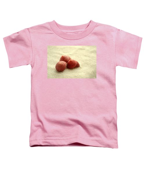Nothing Is Ordinary Toddler T-Shirt