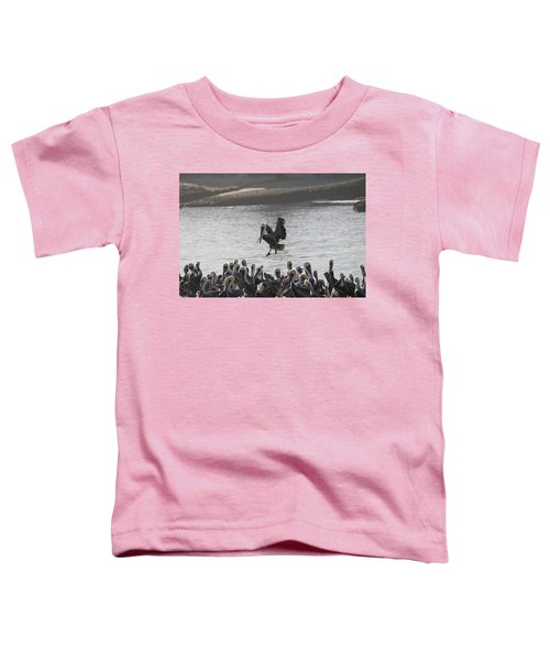 Plenty Of Room Toddler T-Shirt