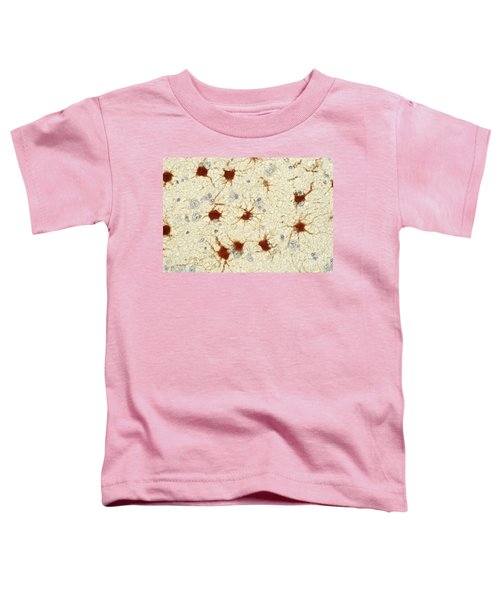 Protoplasmic Astrocytes Toddler T-Shirt