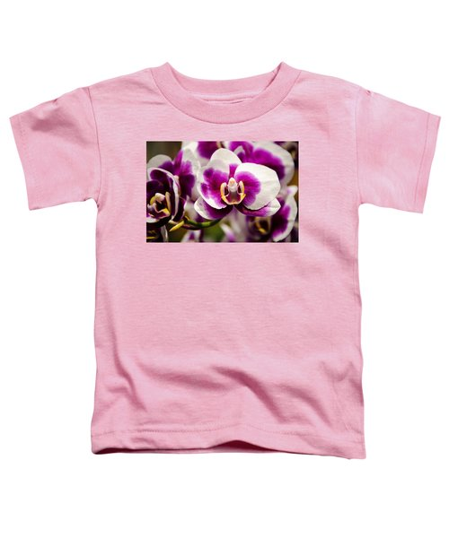 Purple Beauty Toddler T-Shirt