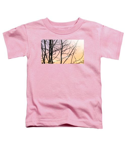 Spectrum Toddler T-Shirt