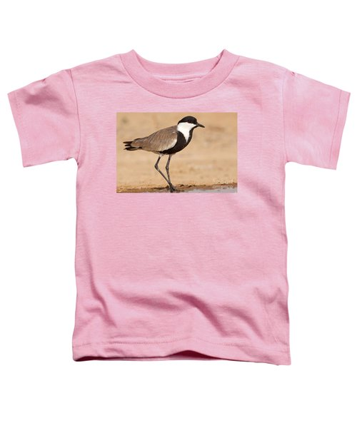 Spur-winged Lapwing Vanellus Spinosus Toddler T-Shirt by Eyal Bartov
