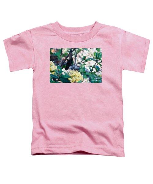 St. Lucian Hummingbird Toddler T-Shirt