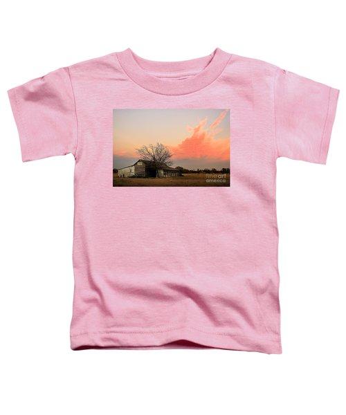 Texas Sunset Toddler T-Shirt