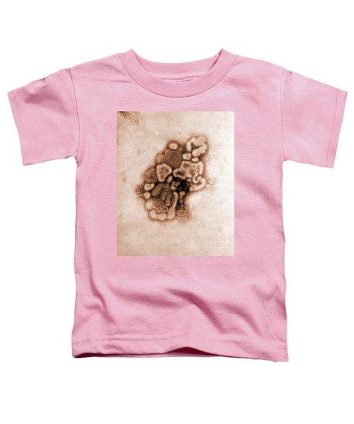 Hsw1n1 Swine Flu, Tem Toddler T-Shirt