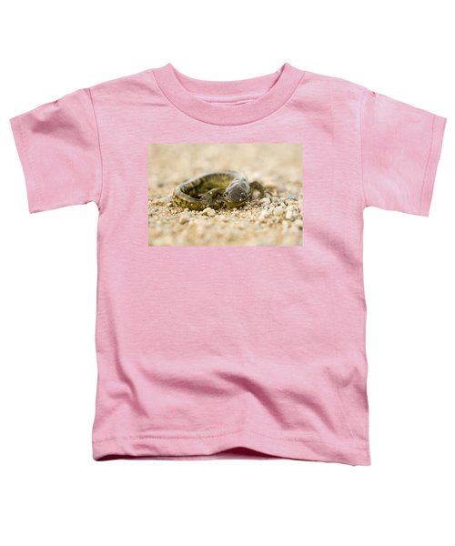 Close Up Tiger Salamander Toddler T-Shirt by Mark Duffy