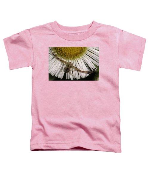 Flower Spider On Fleabane Toddler T-Shirt
