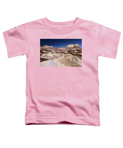 Petrified Forest Blue Mesa Toddler T-Shirt