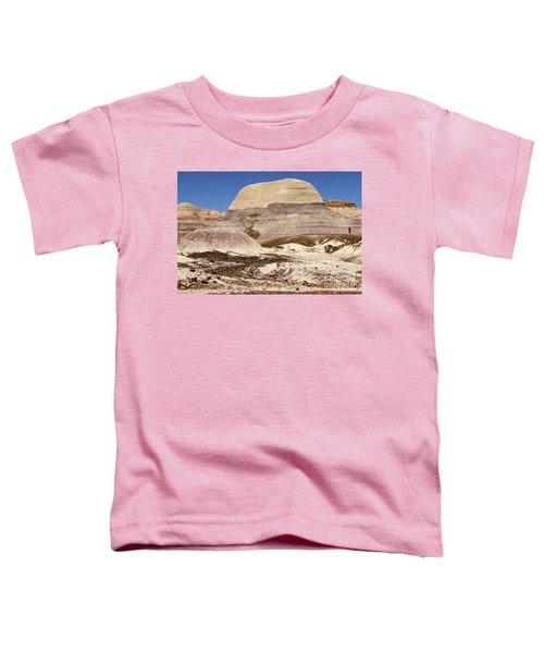 Petrified Forest Painted Desert Toddler T-Shirt