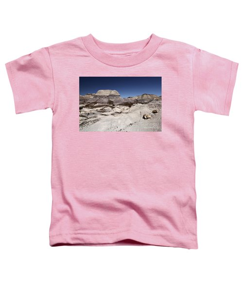 Petrified Trail Toddler T-Shirt