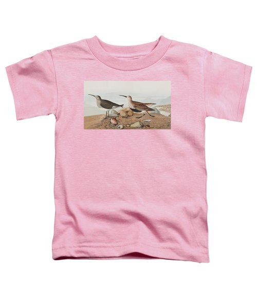 Red Backed Sandpiper Toddler T-Shirt