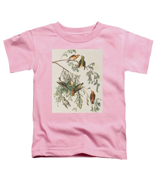 American Crossbill Toddler T-Shirt by John James Audubon