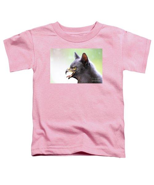 Kitty Hawk Toddler T-Shirt