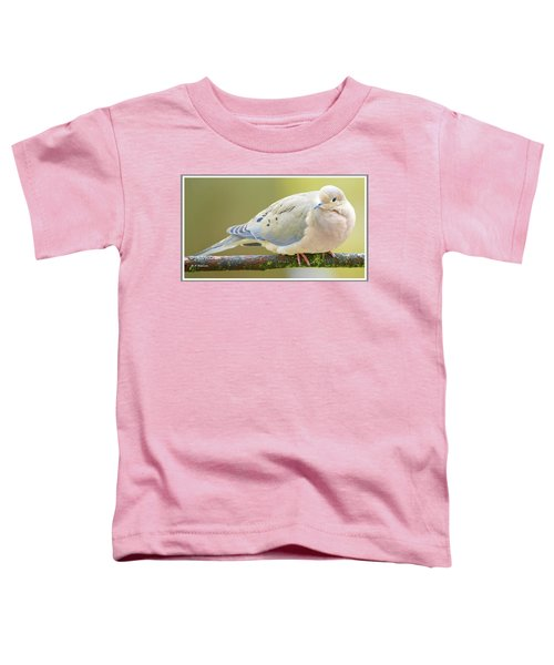 Mourning Dove On Tree Branch Toddler T-Shirt