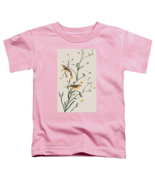 Yellow Red-poll Warbler Toddler T-Shirt by John James Audubon
