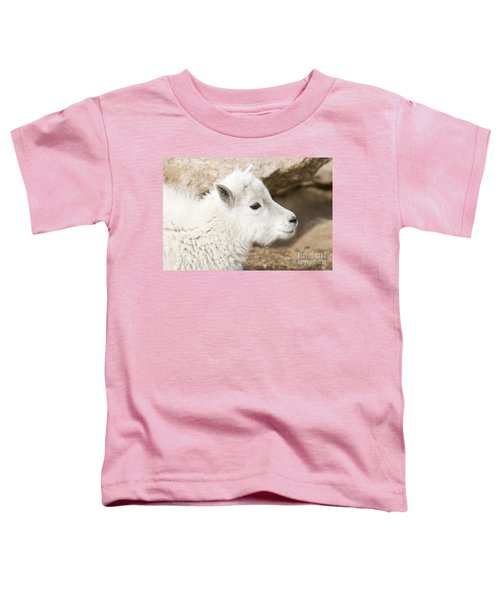 Baby Mountain Goats On Mount Evans Toddler T-Shirt