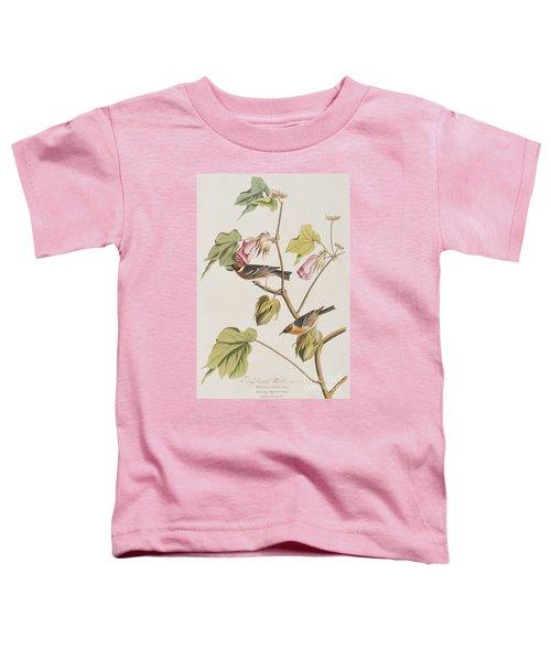 Bay Breasted Warbler Toddler T-Shirt by John James Audubon
