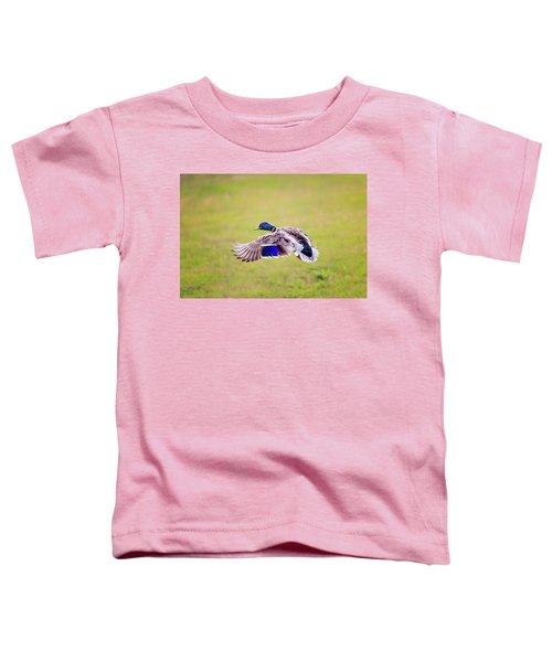 Duck-drake Toddler T-Shirt