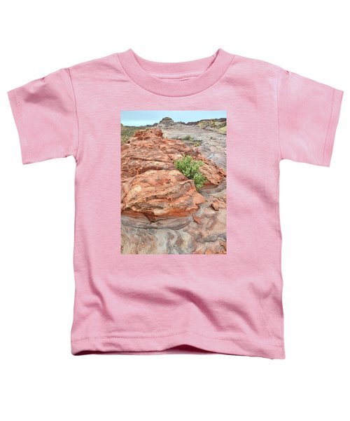 Colorful Sandstone In Valley Of Fire Toddler T-Shirt