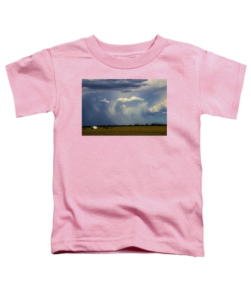 Afternoon Nebraska Thunderstorm Toddler T-Shirt