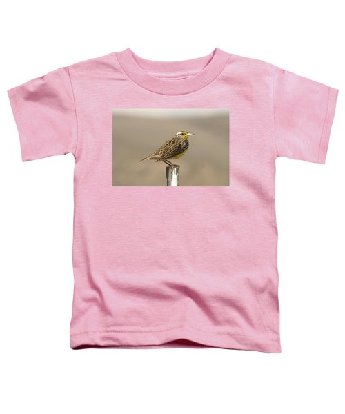 A Beautiful Meadowlark Toddler T-Shirt