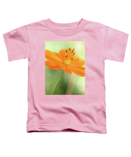 A Fair Lady Of The Plains Toddler T-Shirt