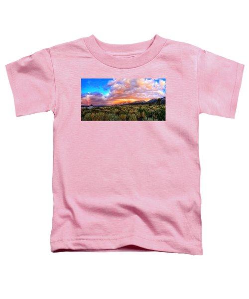 After The Storm Panorama Toddler T-Shirt