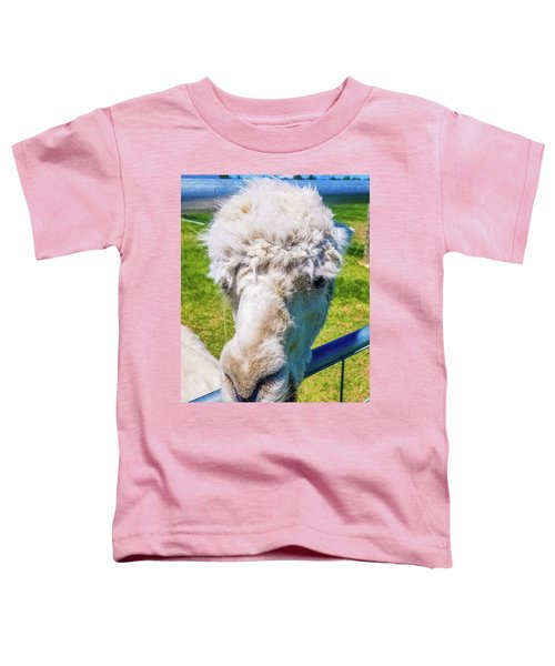 Alpaca Yeah Toddler T-Shirt
