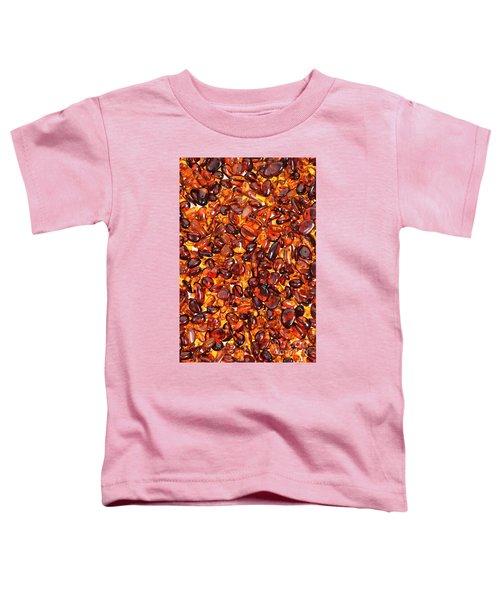 Amber #7960 Toddler T-Shirt