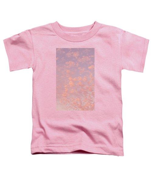Angel Sky Toddler T-Shirt