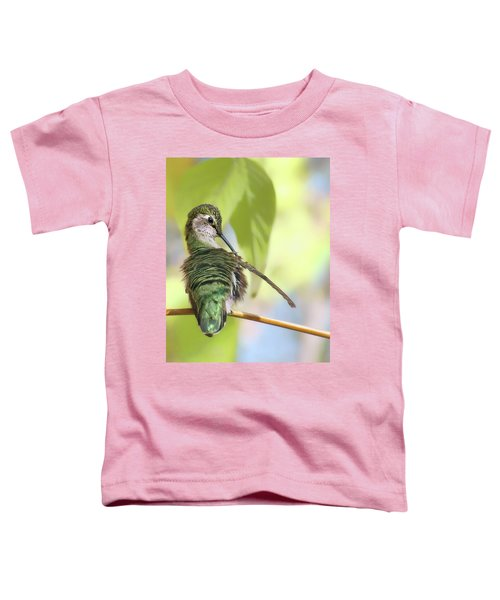 Anna's Hummingbird - Preening Toddler T-Shirt