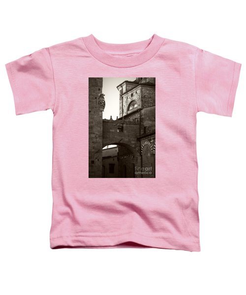 Architecture Of Pistoia Toddler T-Shirt