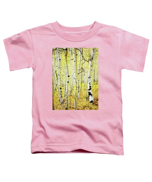 Aspen Grove Toddler T-Shirt