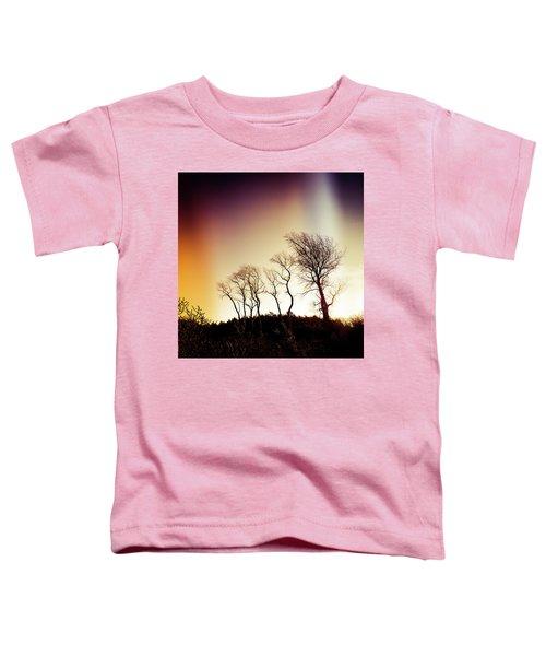 Aurora Borealis Toddler T-Shirt