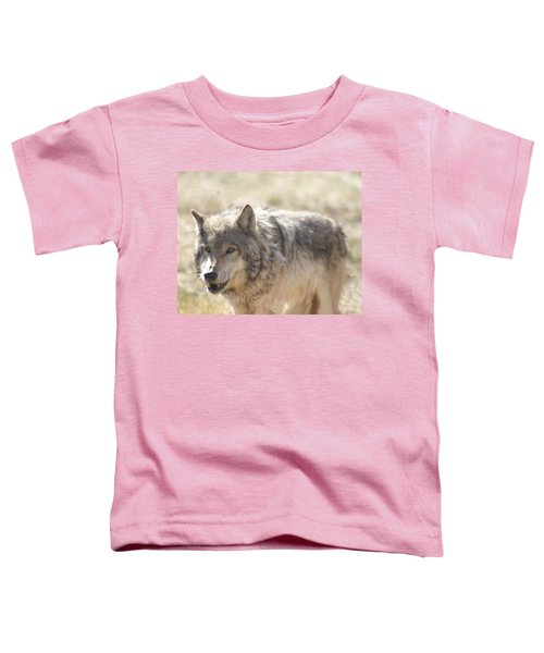 Back Off Buddy Toddler T-Shirt