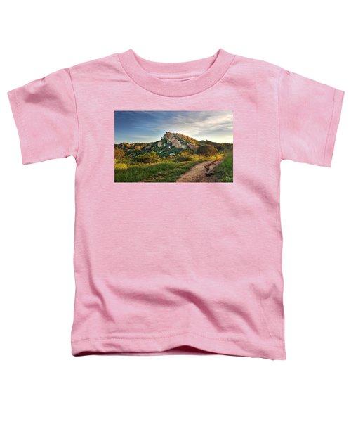 Big Rock Toddler T-Shirt