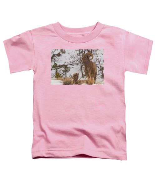 Bighorn Ram And Kid Toddler T-Shirt