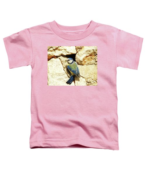 Bird Feeding Chick Toddler T-Shirt