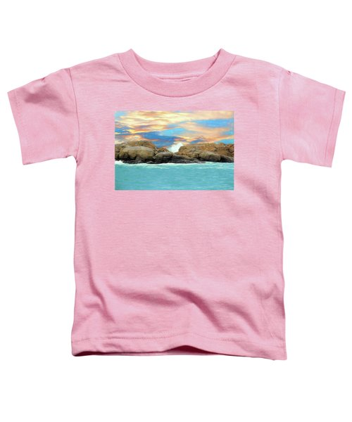 Birds On Ocean Rocks Toddler T-Shirt